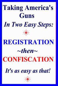 TAKING AMERICA'S GUNS