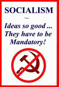 SOCIALISM -- IDEAS SO GOOD